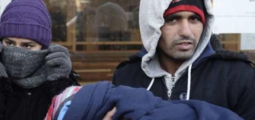 Ассоциация адвокатов пытается успокоить беженцев