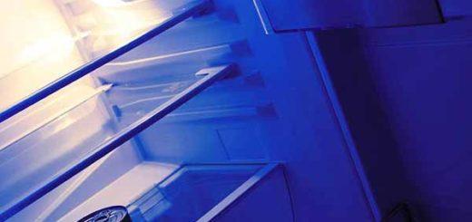 Во Франции гражданку Бельгии, заморозившую в холодильнике младенца, приговорили к семи годам тюрьмы