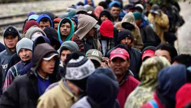 бельгийские мигранты