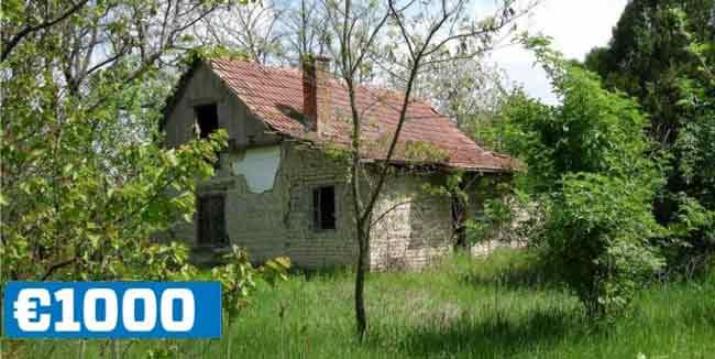 """Недвижимость в Венгрии: Дом сына Лидие Янника. """"Его нужно сносить и перестраивать заново"""""""