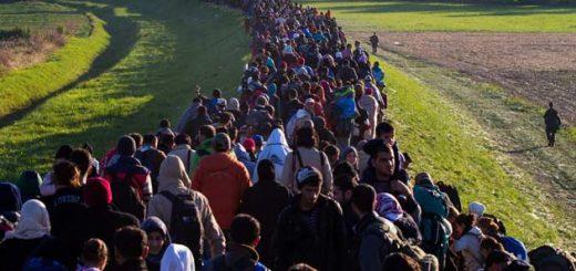 Бельгия, страна с границей? Настоящие цифры миграции