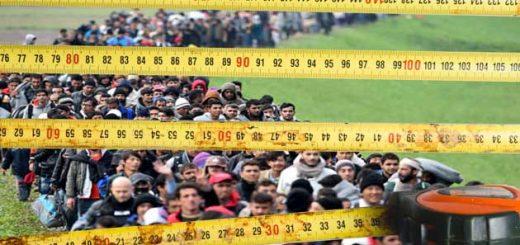 Франкен ждет исследования по замерам миграции в нашей стране