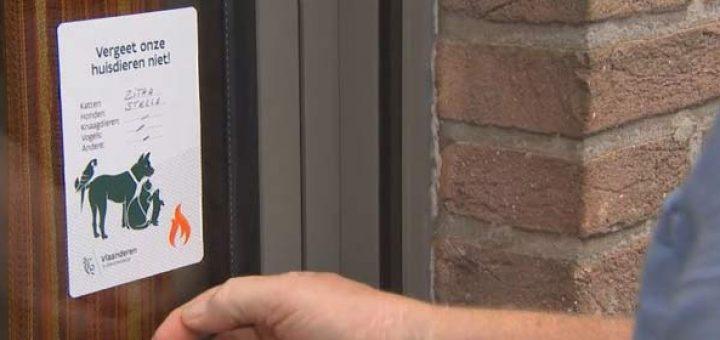 Бесплатные стикеры для уведомления пожарных о наличии в доме животных уже доступны