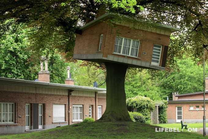 Антверпен: дом на дереве