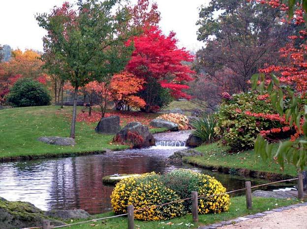 японский сад в городе Хасселт