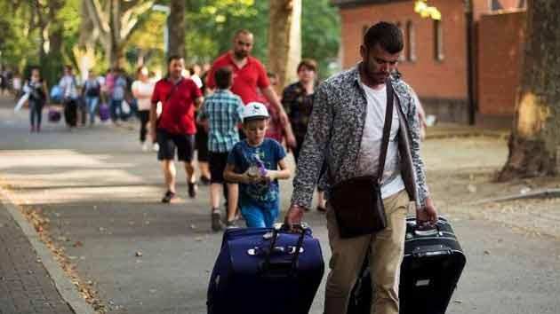 """Бельгия. """"Миграция способствует улучшению экономики"""""""