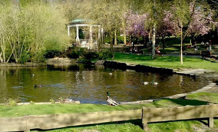 Парк в Мускроне