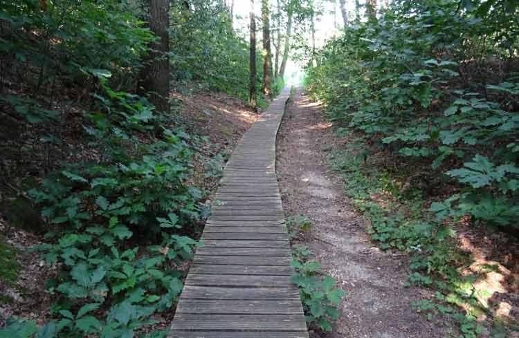 Достопримечательности Бельгии: Национальный парк Hoge Kempen