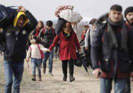 2 из 3 бельгийцев считают, что миграцию из мусульманских стран следует прекратить